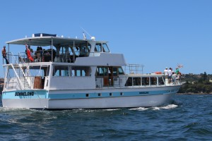 Bennelong Cruising Sydney